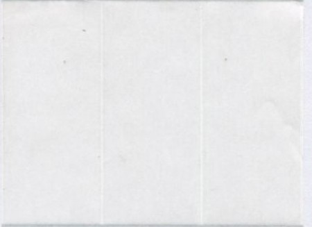 貼貼人_透明龍3x7cm