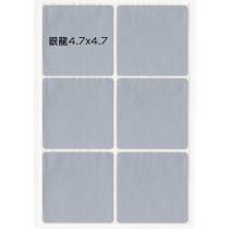 貼貼人_銀龍4.7x4.7cm